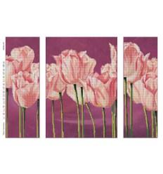 Нежные тюльпаны DANA-410