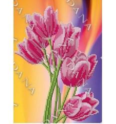 Фейерверк тюльпанов DANA-2133