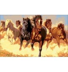 Табун коней МЦ1-004
