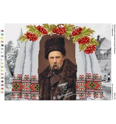 Шевченко Т.Г.БА3-172