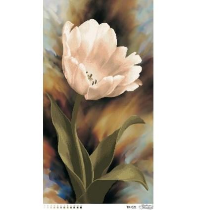 Тюльпан TК-021