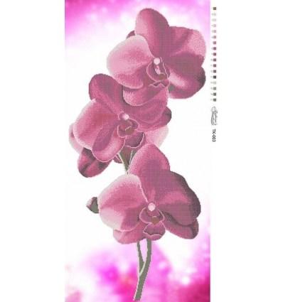 Орхидея TК-003
