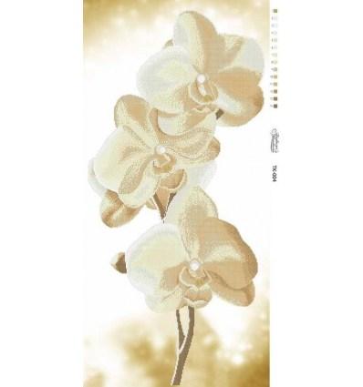 Орхидея TК-004