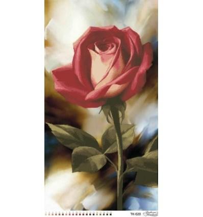 Роза TК-020
