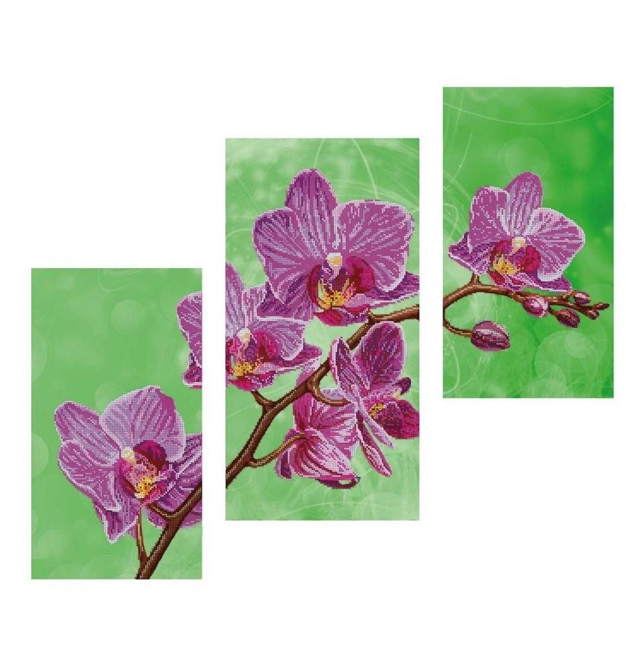 Вишивка бісером Триптих Орхідея DANA-43 купити недорого в інтернет ... c1eab6c5a3168