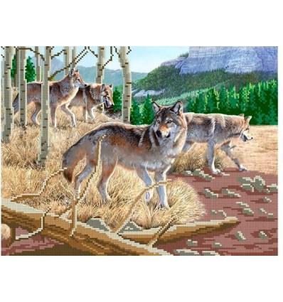 Зграя вовків ба3-267