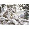 Белый тигр ЧВ 50-331