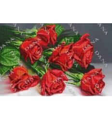 Букет роз DANA-3383