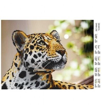 Леопард DANA-250