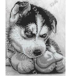 Собачка DANA-2375