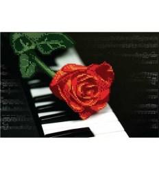 Розы DANA-2175