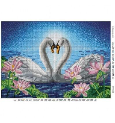 Любовь в верности dana-362(н)