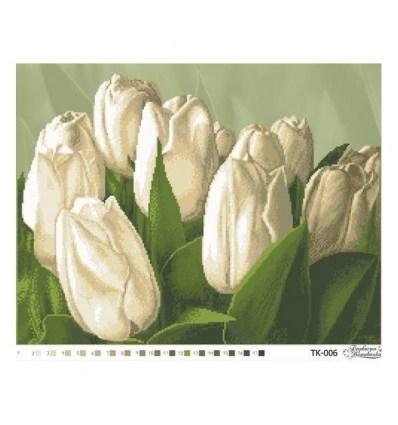 Тюльпаны TК-006(н)