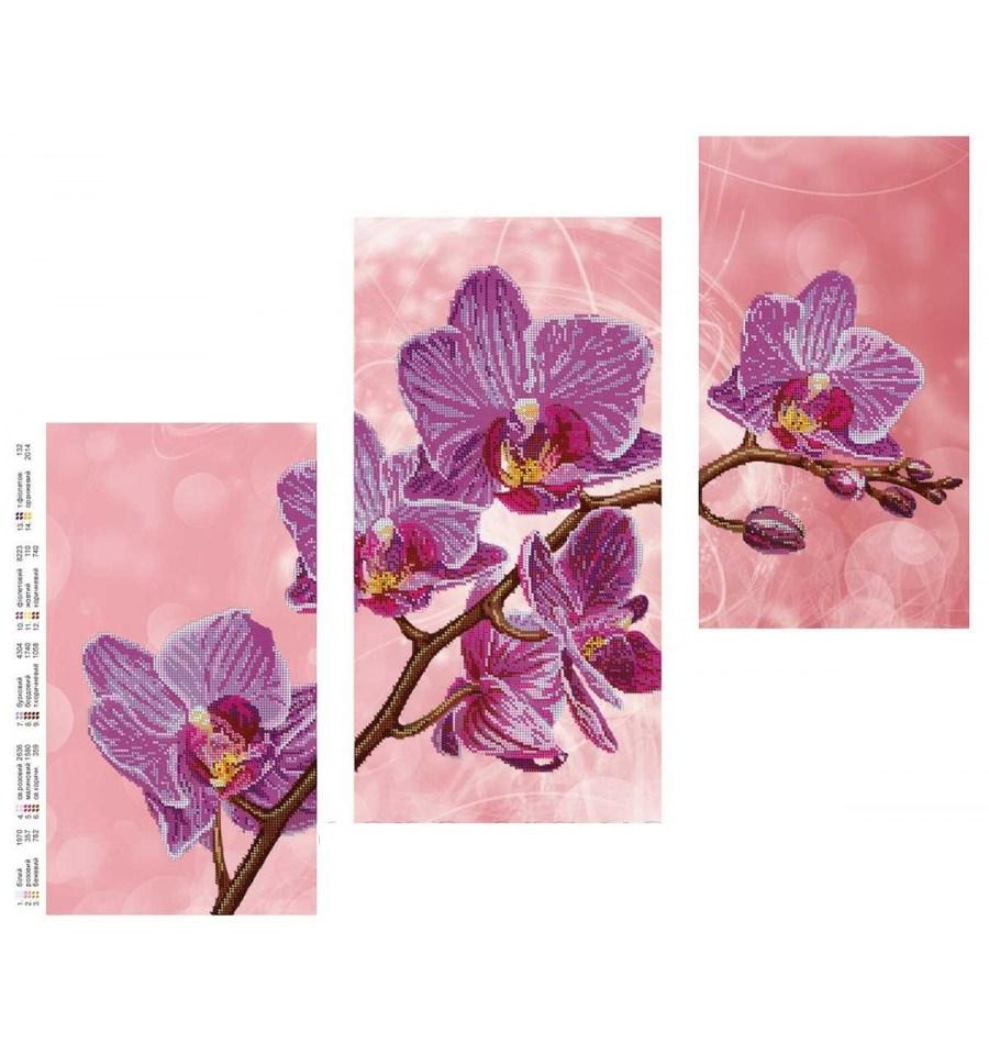 Вишивка бісером Триптих орхидея DANA-42(н) купити недорого в інтерн... 91ed8ad93f2ac