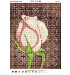 Нежные розы ЧВ-3095