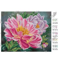Тюльпаны DANA-2135