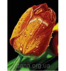 Ваза с ягодами DANA-3190