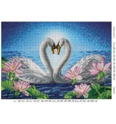 Кохання в вірності dana-362