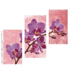 Триптих орхидея DANA-42