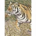 Белый тигр ЧВ 50-328